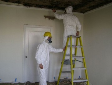 Mold Removal in Melrose, TN